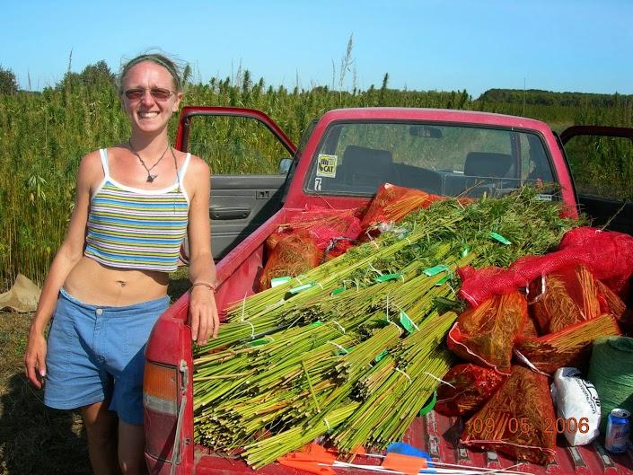 sept-5-06-harvest-c-174