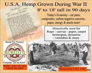 Hempzel History