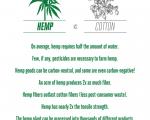 Recreator Hemp vs Cotton