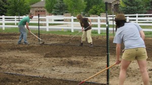 Planting ceremony in Brighten, CO helping to plant hemp for the first official growing season. Here the group was prepping the soil before broadcasting seed. Source